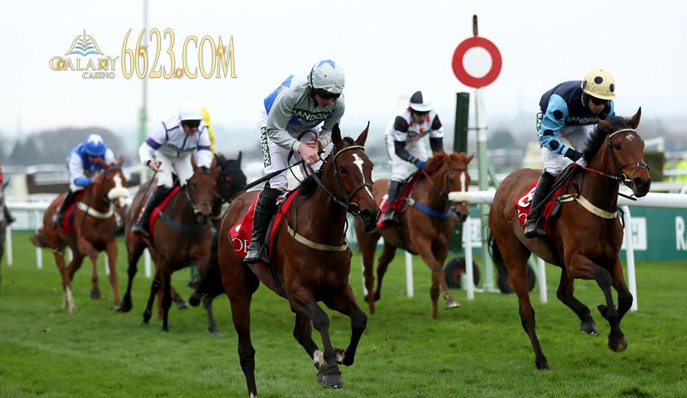 Triefect là một hình thức đặt cược trong đua ngựa