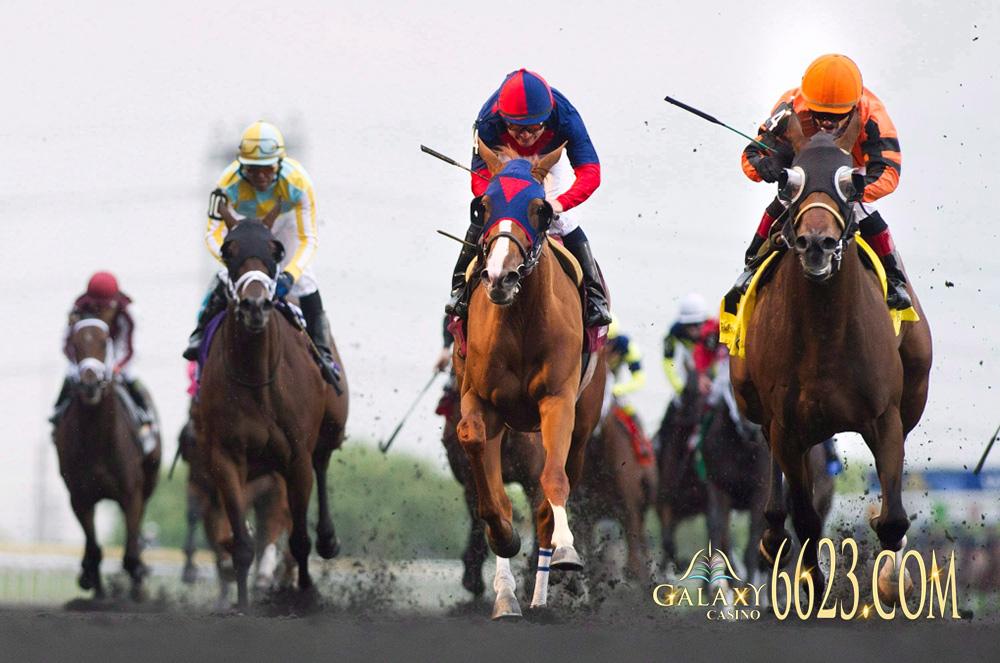 Các thuật ngữ trong đua ngựa